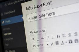 WordPress website snippet